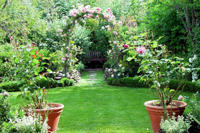 Сад иллюзий